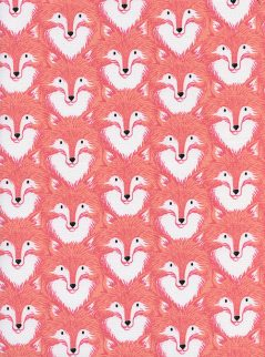 Foxes  Coral