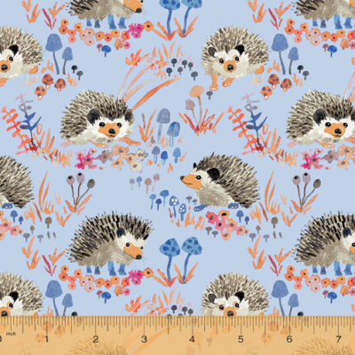 Hedgehog  Blue