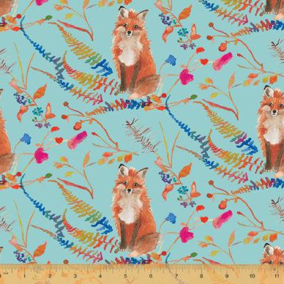 Curious Fox  Aqua