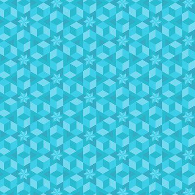 Starfish  Seaglass