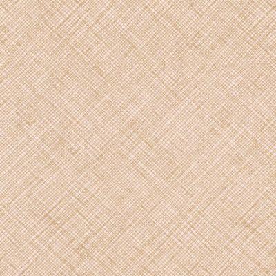 Afr-13503  Parchment