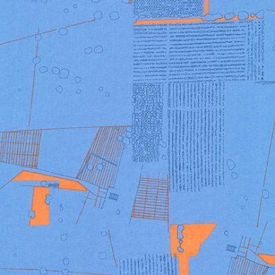 Afr-16605  Blue Jay
