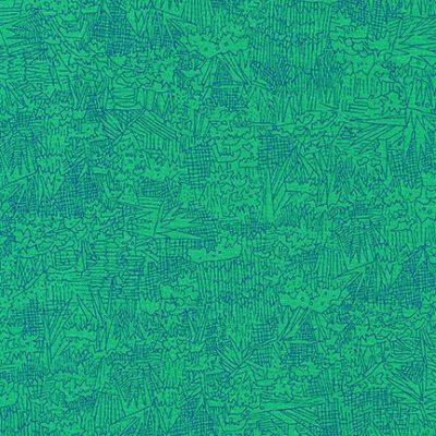 Afr-16608  Fern