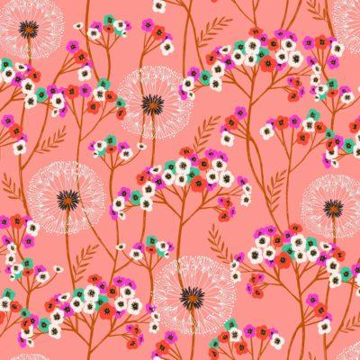 Dandelions  Coral