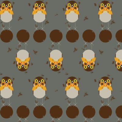 Burrowing Owl  Grey