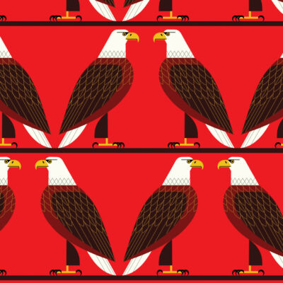 Bald Eagle  Red