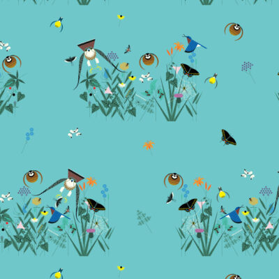 Small Field Of Birds  Teal