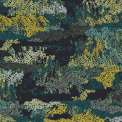 Camouflage  Pretense