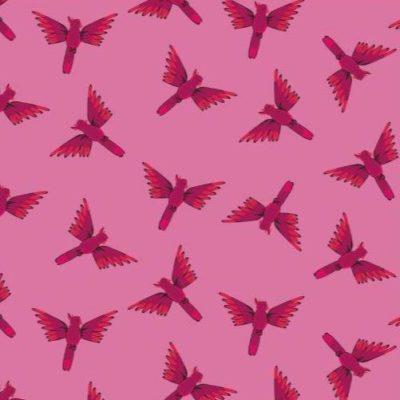 Cockatoos  Pink