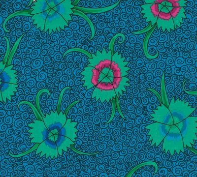 Dianthus Blue