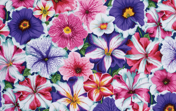 Petunias Purple