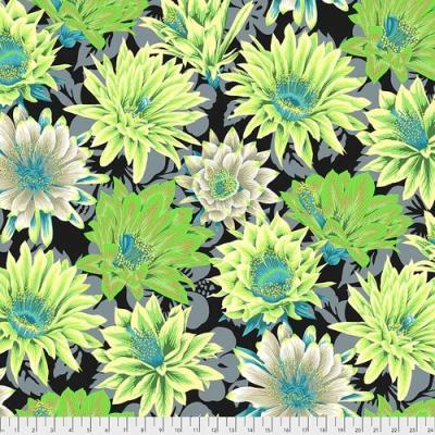 Cactus Flower  Contrast