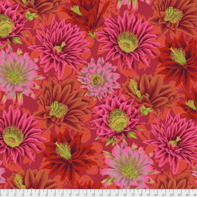 Cactus Flower  Red