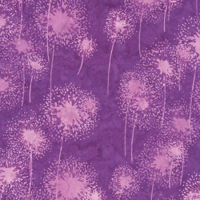 Dandelions  Crocus