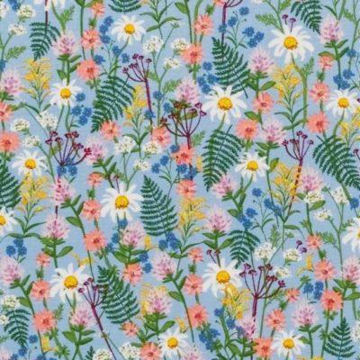 Wildflowers  Blue