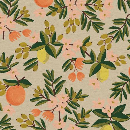 Citrus Floral  Cream