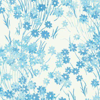 Daisy  Baby Blue