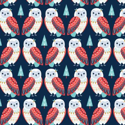 Owls  Navy
