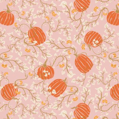 Through The Pumpkin Patch  Starlight