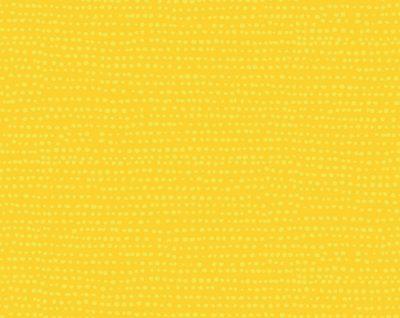 Moonscape  Lemon