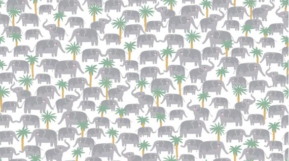 Elephant Trek  White