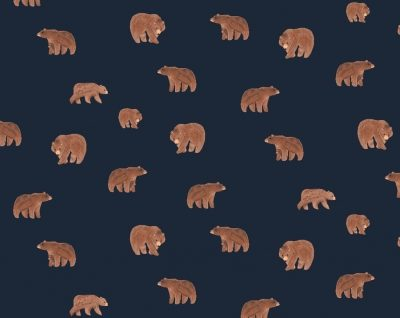 Bears  Patriot