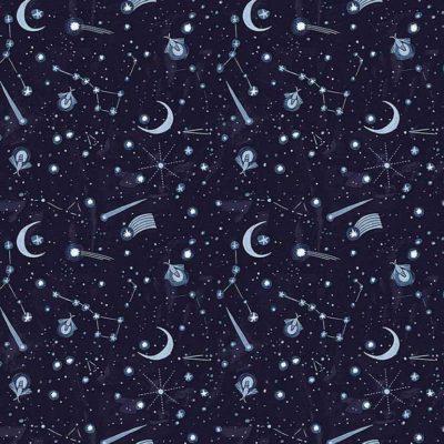 Night Sky  Indigo