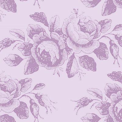 Mary  Lilac Mist