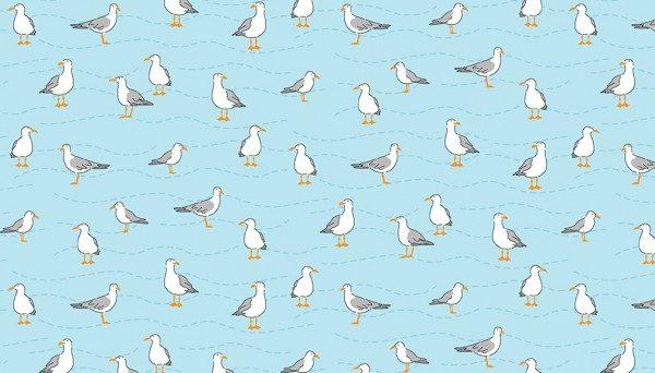 Seagulls  Blue