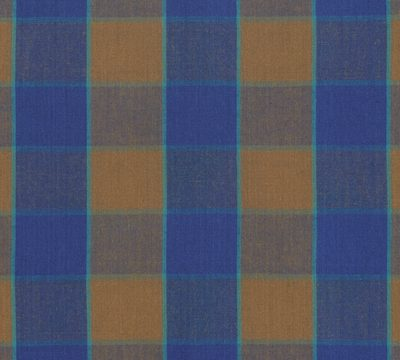 Checkerboard Plaid Ikat  Blue
